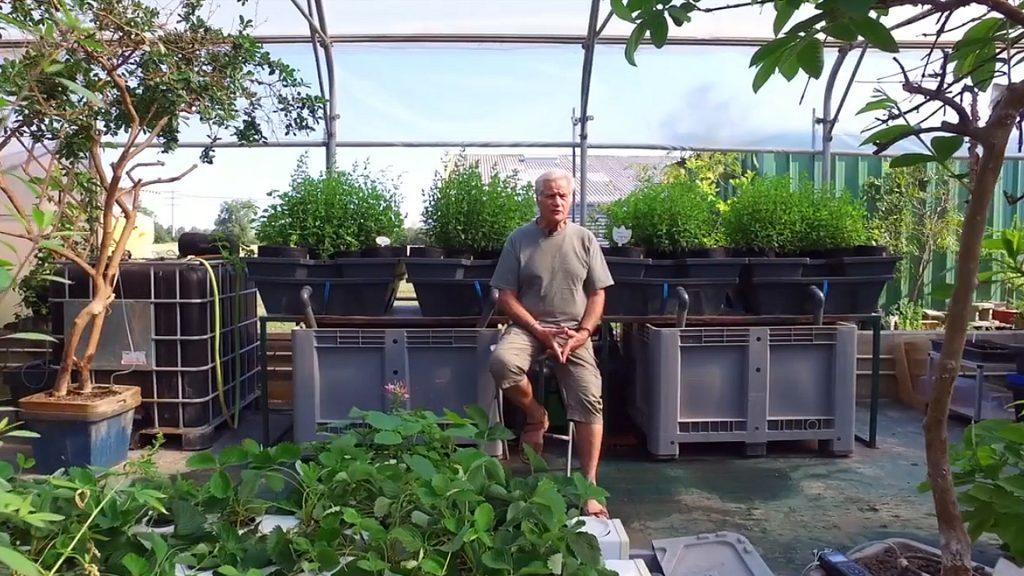 «Connaissez-vous le goût de la tomate ?» Analyse de l'agriculture moderne (par William Texier pour Terra Aquatica)