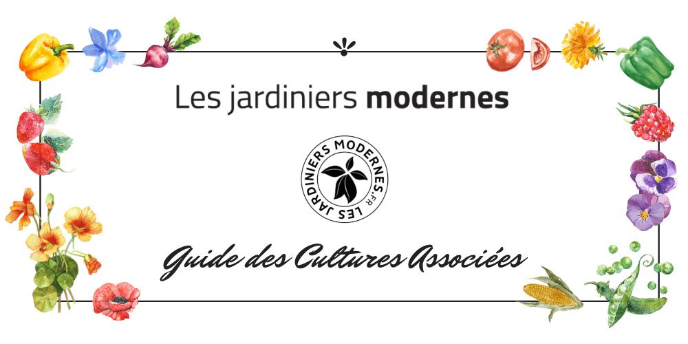 cultures associées les jardiniers modernes